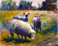 32_sheep.jpg